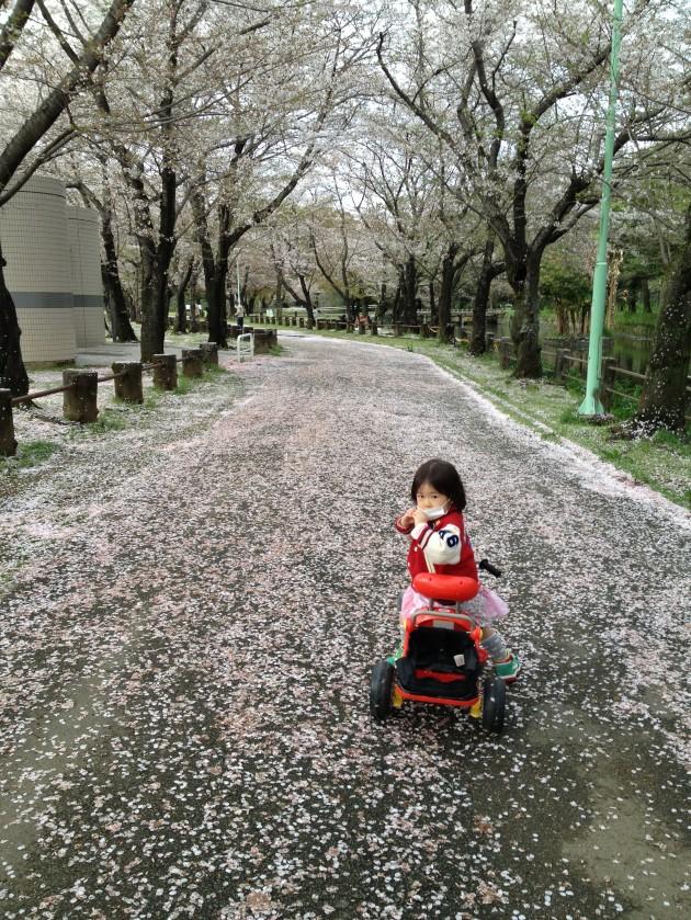 Photo 2014-03-30 17 01 59
