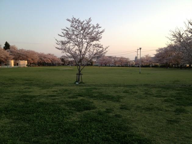 Photo 2014-03-31 18 13 10